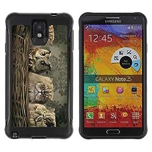 Hybrid Anti-Shock Defend Case for Samsung Galaxy Note 3 / Cute Owl's & Fluffy Cat