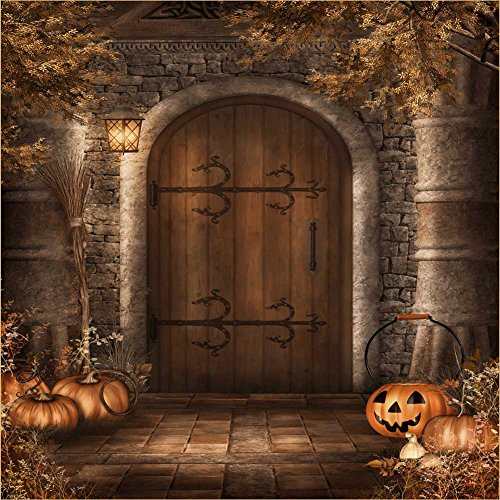 GladsBuy Knock at Door 8' x 8' Computer Printed Photography Backdrop Halloween Theme Background DGX-138]()
