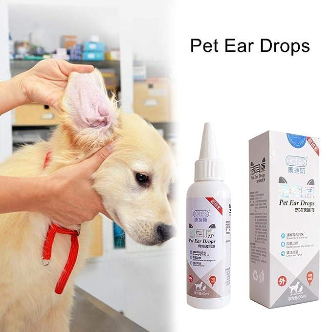 yizhi2325 Limpiador de oídos para Perros y Gatos, Gotas para oídos de Mascotas para el Control de infecciones, levaduras, ácaros e infecciones: Amazon.es: ...