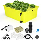 GROWNEER 11 Sites Hydroponics Grower Kit Household DWC Hydroponic System Growing Kits with Air Pump and Hydroponics Tools for
