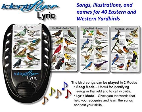 BirdSong IdentiFlyer Lyric, IdentiFlyer Lyric with 40 YardBirds and Birds iView Window Clings