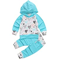 Emmababy Baby Girls' 2Pcs Hoodie Set Sleeve T-Shirt Top + Pants Fall Clothing