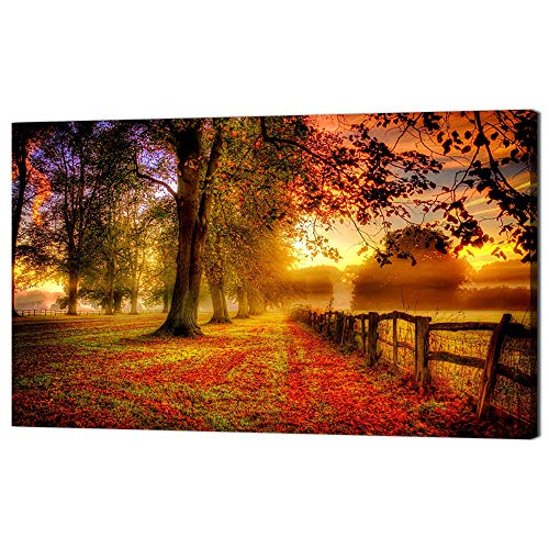 Framed Sunrays - Large Painting on Canvas Modern Wall Art Golden Autumn,Fall Landscape Brown Leaves,Sunrays Shining through Trees Posters and Prints Pictures for Living Room Framed Stretched Ready to Hang(48''Wx28''H)