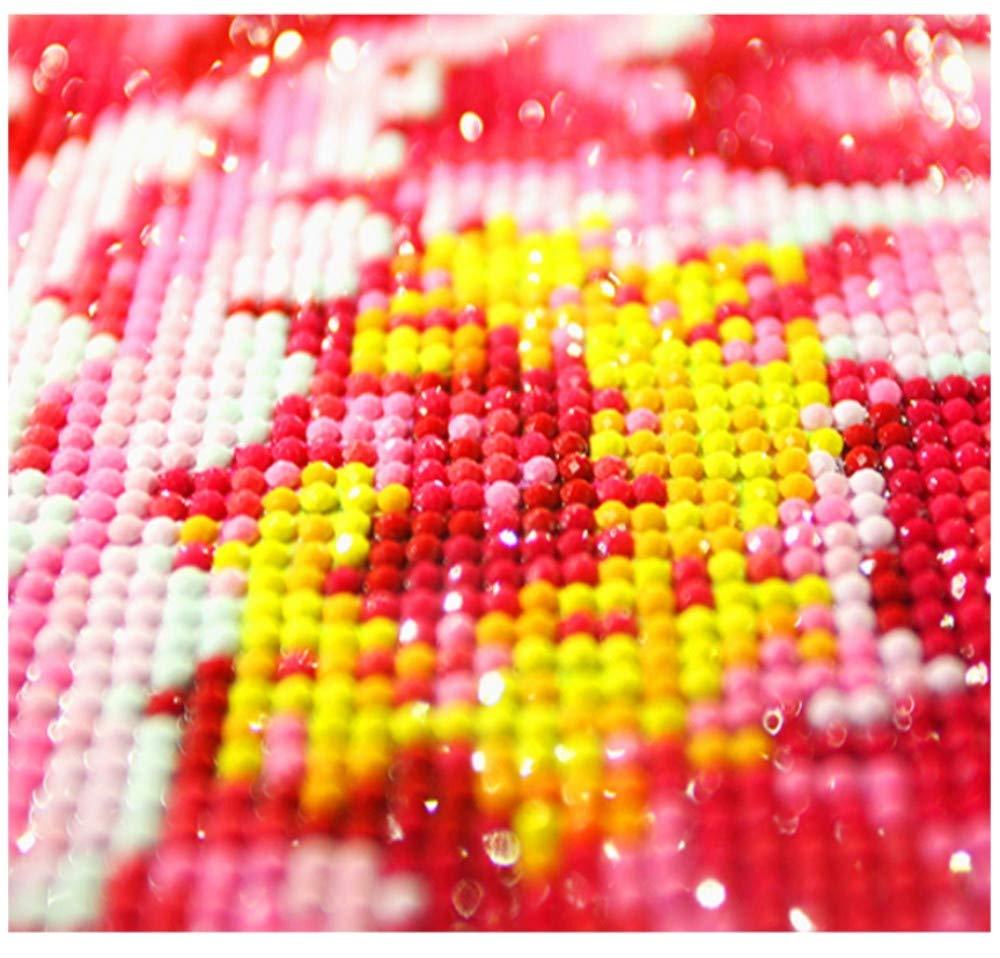 CZYSKY 5D Diamante Bordado Pinturas Rhinestone Pegado Pintura Diamante Kits De Punto De Cruz Flor De Hadas Mosaico De Diamantes Decoraci/ón De La Pared Artes