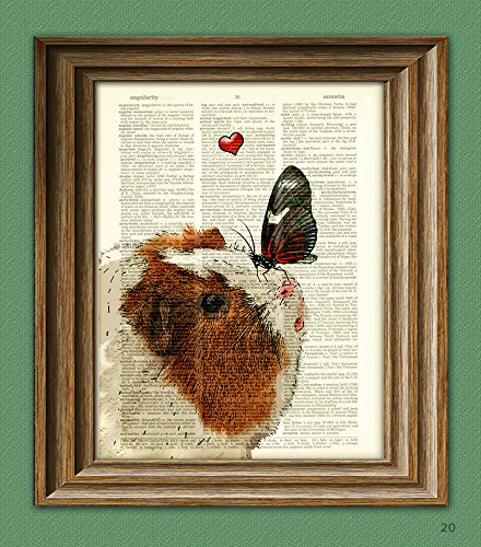 Friend Pig - Winnie makes a new friend GUINEA PIG with butterfly Art Print Cavy beautifully upcycled vintage dictionary page book art print altered