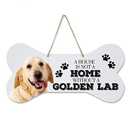Amazon Com Lifesong Milestones Golden Labrador Retriever Gifts Pet