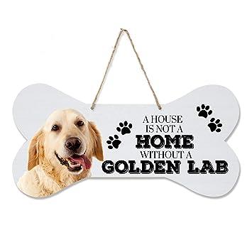 Amazoncom Lifesong Milestones Golden Labrador Retriever Giftspet