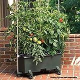 EarthBox 80101 Garden Kit, Standard, Green