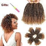 8 Inch Short Marlybob Crochet Hair 6 Packs/Lot Kinky Curly Crochet Braids Ombre