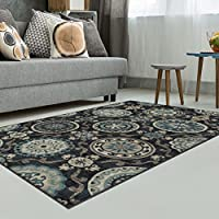 Superior Area Rug 2 x 3 10mm Pile Height with Jute Backing, Woven Fashionable and Affordable Abner Collection, Black
