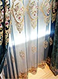 Aside Bside Victorian Style Transparent Window Decoration Rod Pocket Top Flower Mirror Embroidered Sheer Curtains Houseroom Kitchen Sitting Room (1 Panel, W 50 x L 63 inch, Blue)