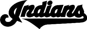 "Indians Fan Vinyl Decal""Sticker"" for Car or Truck Windows, Laptops etc."
