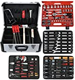 Famex Mechanic's Toolbox with High-End All Tools and Socket Set, 720 09