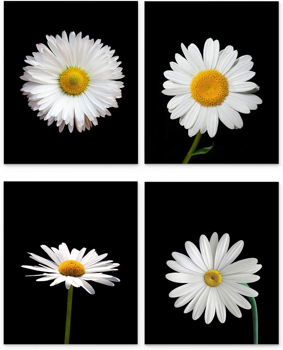 "Daisy Wall Art, 8""x10"" Set of Four, Unframed Botanical Art Print - Stunning Black and White Daisies Flower Decor for Kitchen, Bedroom, Office, Bathroom, Home"