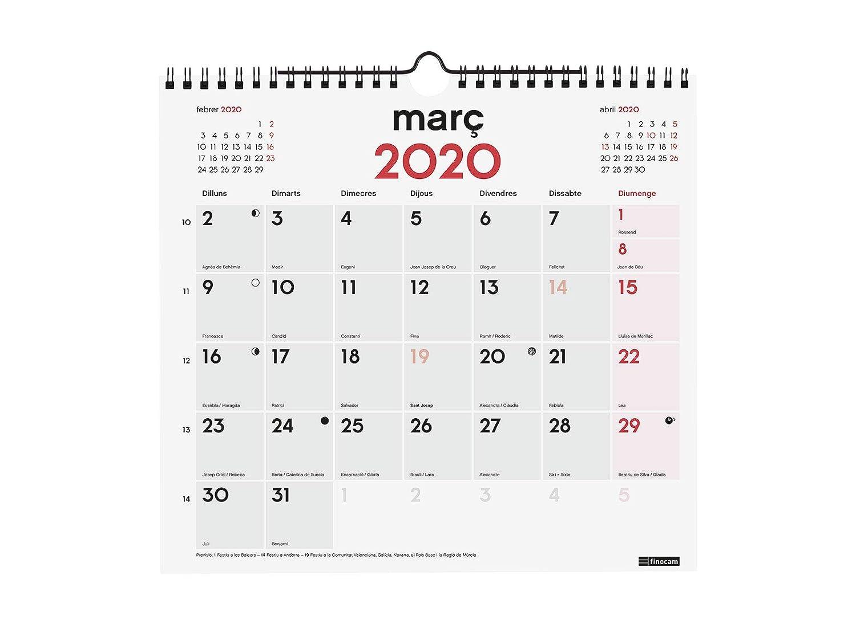 Amazon.com : Finocam - Wall Calendar 2020 Writing Catalan ...