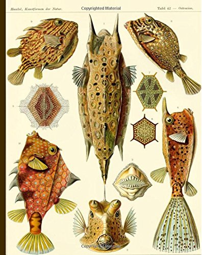 "Tafel 42 - Ostracion, Kunstformen der Natur: Vintage Pufferfish Illustration Notebook, 200 Page Softcover Journal, College Ruled, 8""x10"" Workbook for School, Students, and Teachers pdf epub"