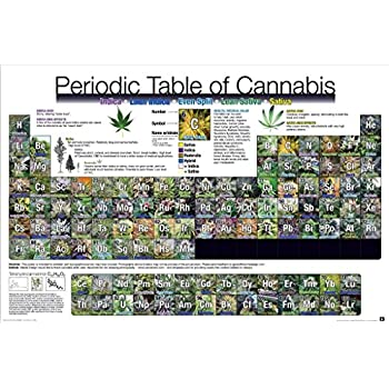 Periodic Table of Cannabis 24x36 Poster