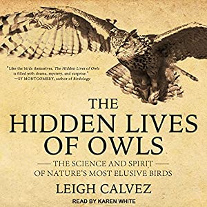 The Hidden Lives of Owls Audiobook
