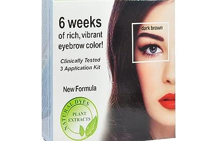 Amazon.com : New Formula Godefroy Instant Eyebrow Tint DARK BROWN ...