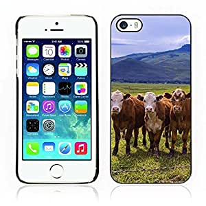 Kellie-Diy Hot Style cell phone PC case cover // Cow // Apple Iphone 9gkMROGE2u8 5 5S