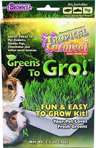 Tropical Carnival Guinea Pig Food - 8
