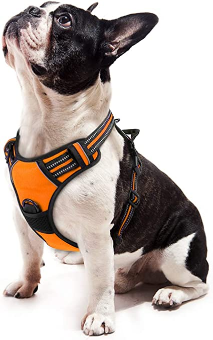 Easy to Put on and Take Off Small Dog Harnesses Our Small Dog Harness Vest ha...