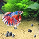 10 Calcium-rich Mineral Beads for Betta --- Tourmaline Balls for Perfect Nutrient Balance - With Over 30 Beneficial Minerals for Active Fish - Natural Décor for Fish Tank - Beauty with a Purpose7