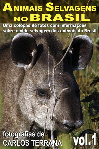Portugueses No Brasil Costumes (ANIMAIS SELVAGENS NO BRASIL - uma coleção de fotografias com informações sobre a vida e costumes dos animais brasileiros - VOL.1 (Portuguese Edition))