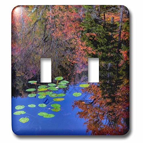 Adirondack Lights Pads (Danita Delimont - Adirondacks - USA, New York, Adirondack Mountains. Trees reflecting in water - Light Switch Covers - double toggle switch (lsp_231322_2))