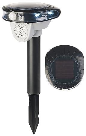 Royal Gardineer Pájaro Ahuyentador de dispositivo: Solar de pájaro Ahuyentador, sensor de movimiento,