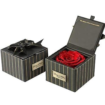 ANLW Regalo del día de San Valentín eterna Rosa Flor Regalo ...
