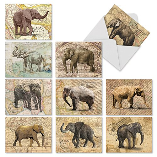 M10022BK Trunk Mail: 10 Assorted Blank All-Occasion Note Cards Featuring Images Of Elephants On An Antique Map Background,w/White Envelopes.