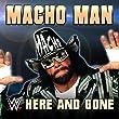 Here And Gone (Macho Man)