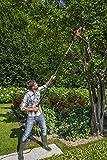 Worx WG309 Electric Pole Saw, 10-Inch