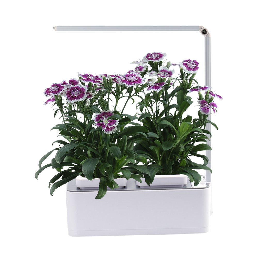 Indoor Herb Garden, AIBIS Hydroponics Watering Growing System, Organic Home Herbs Gardening Kit with Led Grow Light, Not Contain Seeds, Best for Flower and Vegetable like Thyme, Mint and Tomato(White) by AIBIS