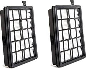 Green Label 2 Pack Replacement HEPA Filter F45 for Dirt Devil Canister Vacuum Cleaners (Compares to 2KQ0107000). Fits: Pets SD40000 and EZ Lite SD40010