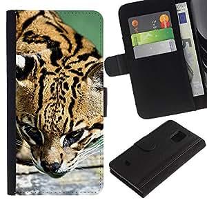 Samsung Galaxy S5 Mini / SM-G800 (Not For S5!!!) , la tarjeta de Crédito Slots PU Funda de cuero Monedero caso cubierta de piel ( Ocelot Feline Hunter Cute Big Cat Wild)