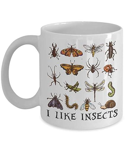 amazon com: entomology mug, insect coffee mug, ceramic bug mug, gardeners  mug, beetle mug, insect diagram mug, larvae pupae mugs, insect gifts:  kitchen &