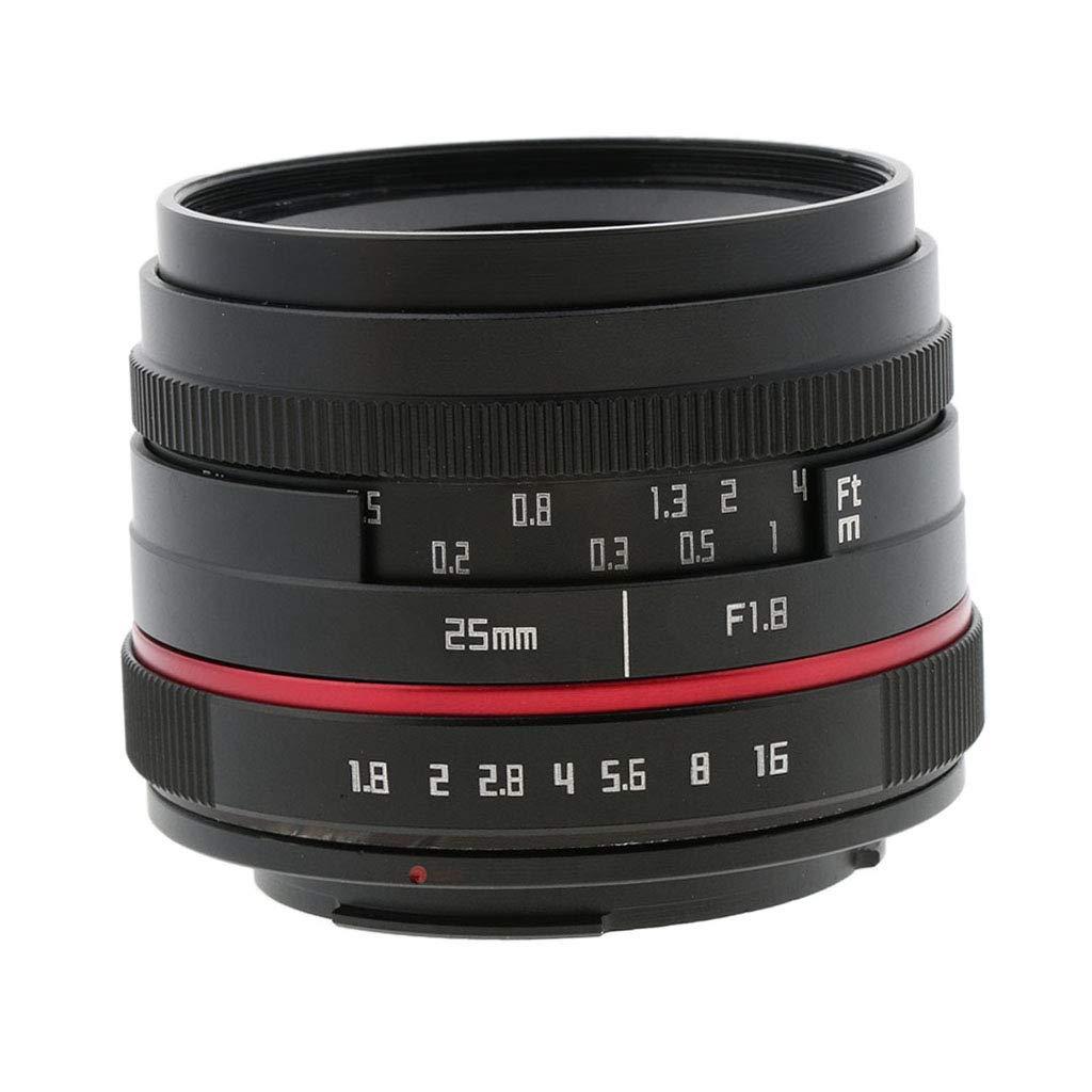 P Prettyia Objetivo Fijo de Cámara F1.8-F16 para Canon M5 M6 M10 ...