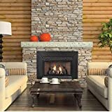 Amazon Com Vent Free Thermostat 28000 Btu Fireplace