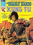 DEADLY HANDS OF KUNG FU #4 (September 1974)