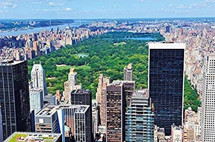 Amazon Com New York Central Park Photo Wall Paper Manhattan Mural