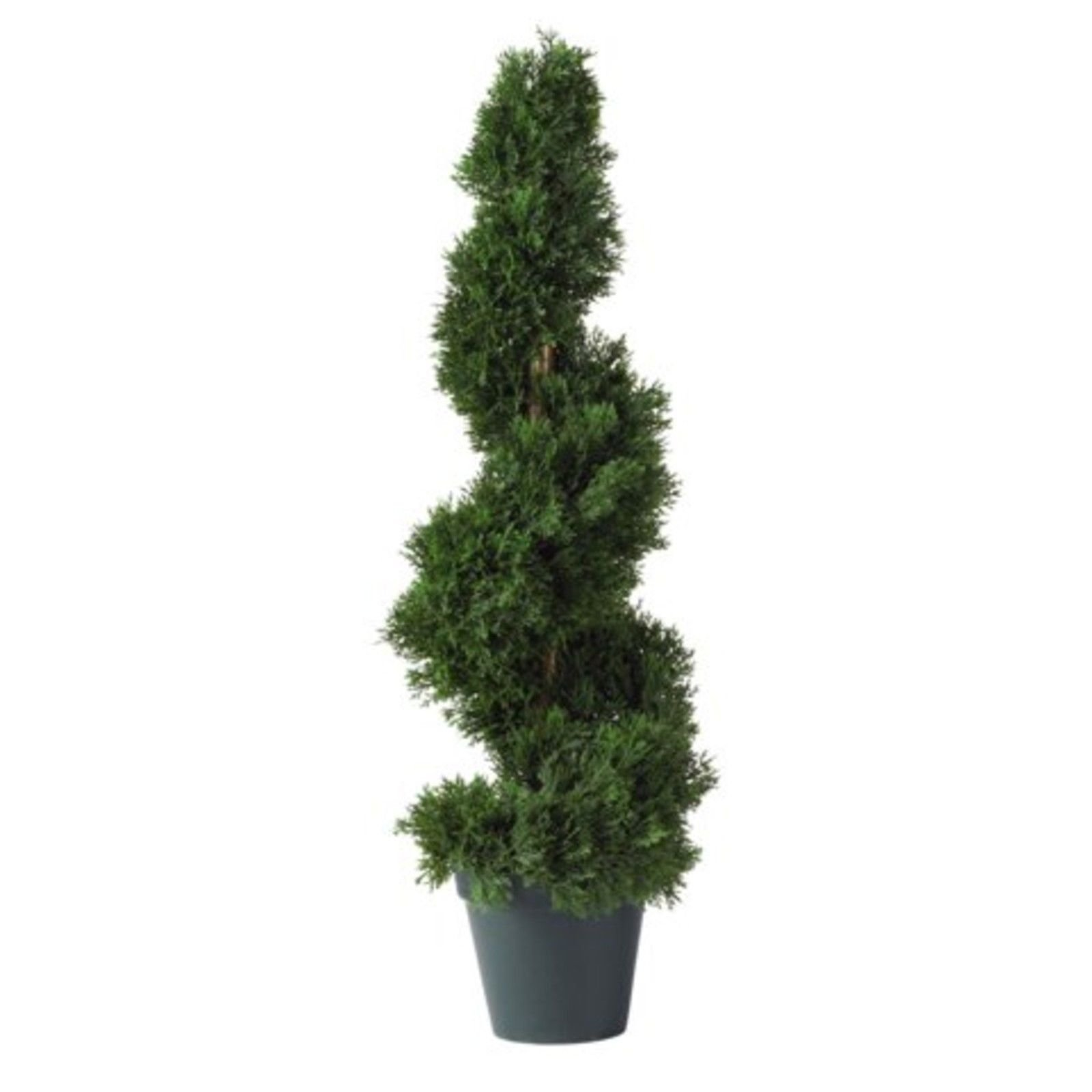 GHP 2'x8''x7'' Cedar Spiral Silk Tree Artificial Faux Plants by Globe House Products
