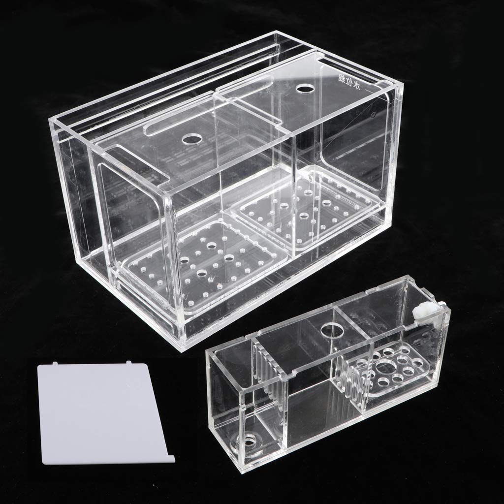 Kesoto Aquarium Hatchery Fish Breeding Box Tank Breeder Multi Grid Isolation Box - 2 Grid by Kesoto (Image #10)