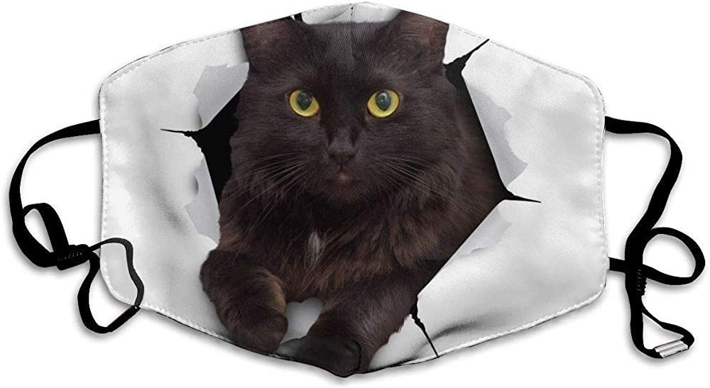 """Maske mit """"Katze-springt-durch-Papier""""-Motiv"""
