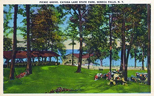 (Seneca Falls, New York - Cayuga Lake State Park Scene (24x36 Giclee Gallery Print, Wall Decor Travel Poster) )