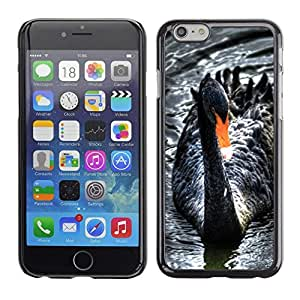 Be Good Phone Accessory // Dura Cáscara cubierta Protectora Caso Carcasa Funda de Protección para Apple Iphone 6 // Black Swan Water Beak Cute Bird Ornithology