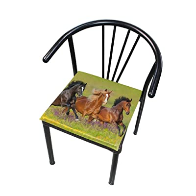 Bardic FICOO Home Patio Chair Cushion Running Horse Grassland Square Cushion Non-Slip Memory Foam Outdoor Seat Cushion, 16x16 Inch: Home & Kitchen