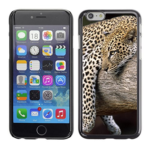 "Premio Sottile Slim Cassa Custodia Case Cover Shell // V00003560 léopard dans un arbre // Apple iPhone 6 6S 6G 4.7"""