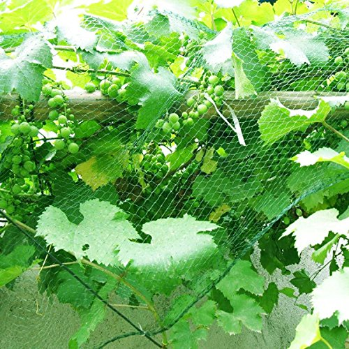 Senneny Bird Netting, 33Ft x 13Ft Anti-Bird Netting 100 Pcs Nylon Cable Ties, Green Garden Netting Protecting Plants Fruit Trees from Rodents Birds Deer by Senneny (Image #6)